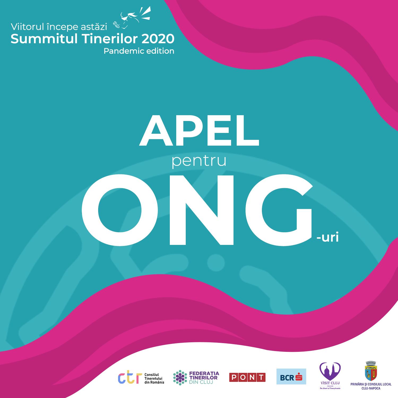 Lansare apel pentru ONG-uri – Summitul Tinerilor 2020